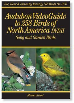 Audubon Video 258 Birds - Song and Garden Birds