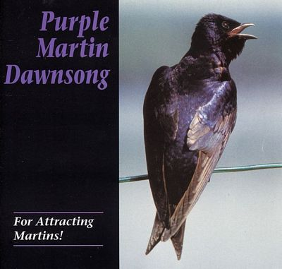 Dawn Song CD  Purple Martin Attractors