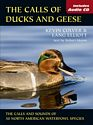 Guide To Ducks And Geese