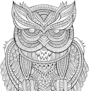 Peter Pauper Press Intricate Owl Town Coloring Book Adult Level