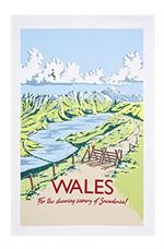 Ulster Weavers Kelly Hall Wales Geography Tea Towel #022KHW
