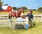Breyer Horses Classics Size New Foal at the Barn Set #61084