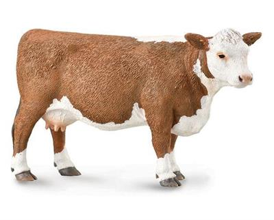"Collect A's #88860 Hereford Cow figurine measures 4.9"" L x 2.4"" H. 1:18 Scale. The Hereford is a British breed of beef cattle that originated in the county of Herefordshire, England. The breed was first exported from the United Kingdom in 1817, initially"