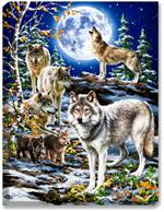 Grey wolf pack with wolf pups and full moon in winter