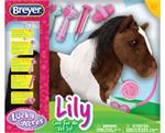 Lily, a Super athlete yet a filly through and through, almost always wins that blue ribbon though her most favorite pastime is solving mysteries. She loves to visit the veterinarian to keep her healthy and fit. She lets the Vet know how much she enjoys he