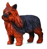 CollectA Yorkshire Terrier Adult Dog, Standing #88078. 1.2''L x 1.2''H Yorkshire Terrier is just one of the many beautifully sculpted pieces in CollectA's Cats and Dogs Collection.